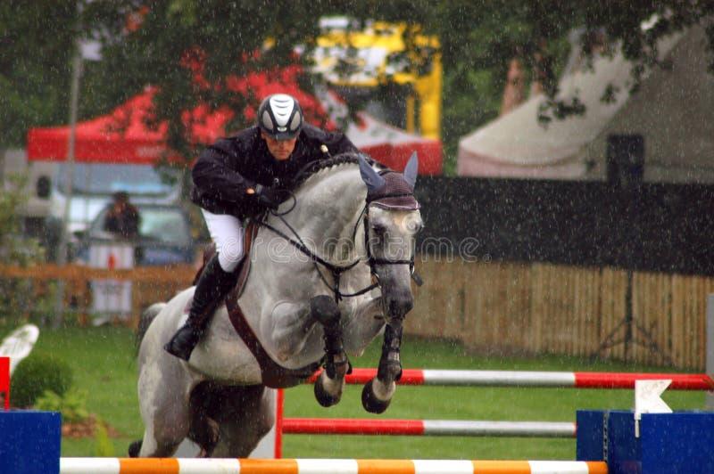 Paard in de regen royalty-vrije stock foto's