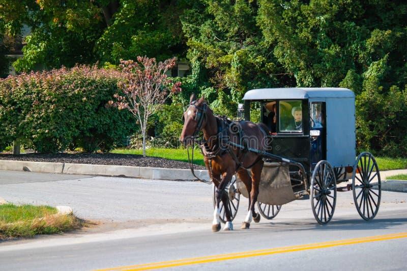 Paard die Amish Met fouten in Lancaster trekken stock afbeelding
