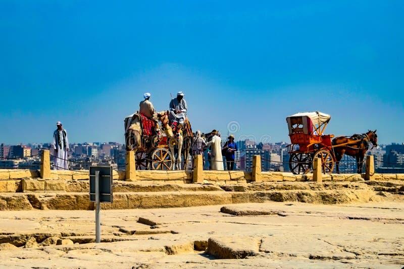 Paard en kar, Giza, Kaïro royalty-vrije stock afbeelding