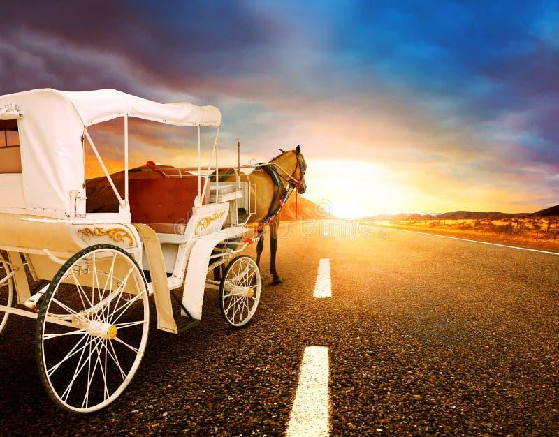 Paard en klassiek sprookjevervoer op asfaltweg perspectiv stock afbeeldingen