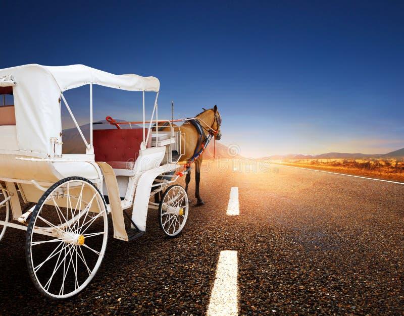 Paard en klassiek sprookjevervoer op asfaltweg perspectiv royalty-vrije stock foto's