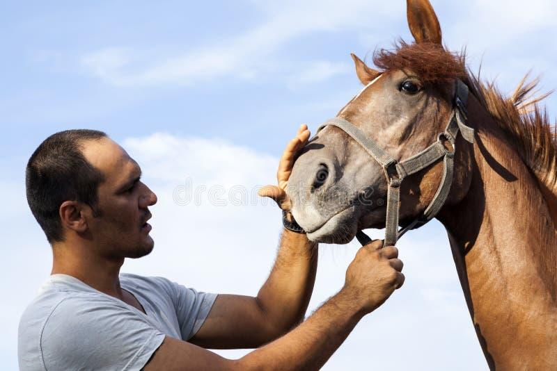 Paard en mens royalty-vrije stock afbeelding
