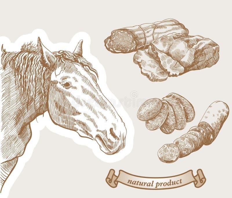Paard en natuurlijke paardvleeswaren stock illustratie