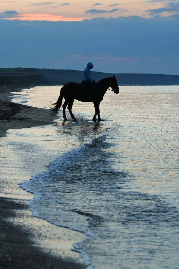 Paard en persoon/gang in de ochtend stock fotografie