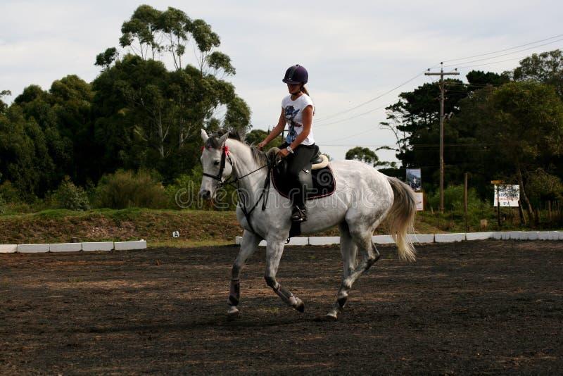 Paard en ruiter royalty-vrije stock foto