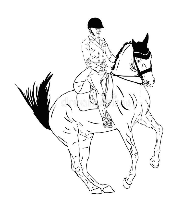 Paard en ruiter in de dressuurconcurrentie vector illustratie