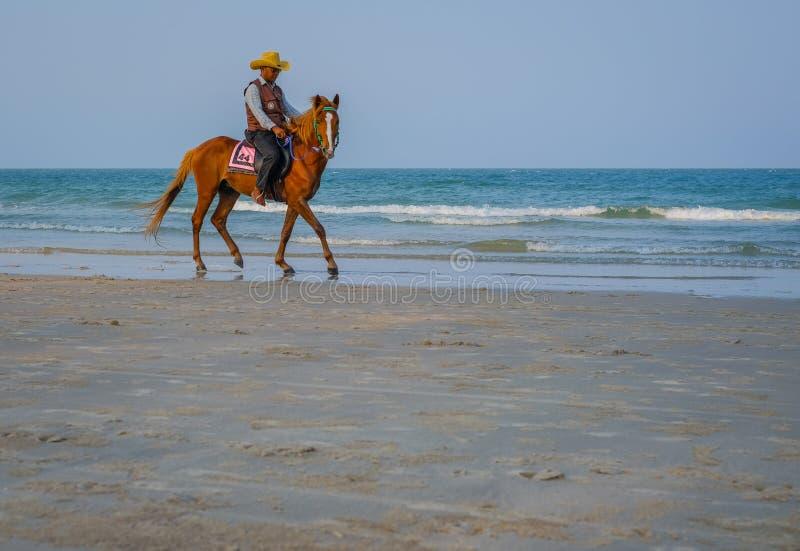 Paard en ruiter op Hua Hin-strand stock fotografie