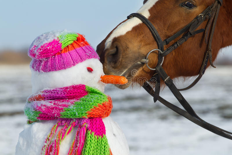 Paard en sneeuwman royalty-vrije stock fotografie