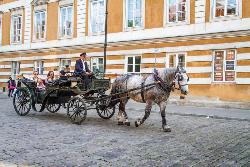 Paard en vervoer royalty-vrije stock foto