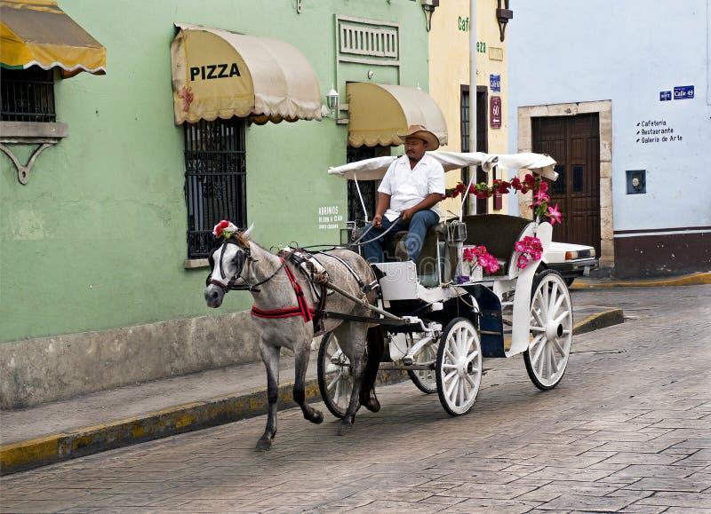 Paard en vervoer op een stadsstraat in Merida, Mexico stock fotografie
