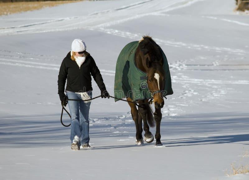 Paard en vrouw in sneeuw royalty-vrije stock foto