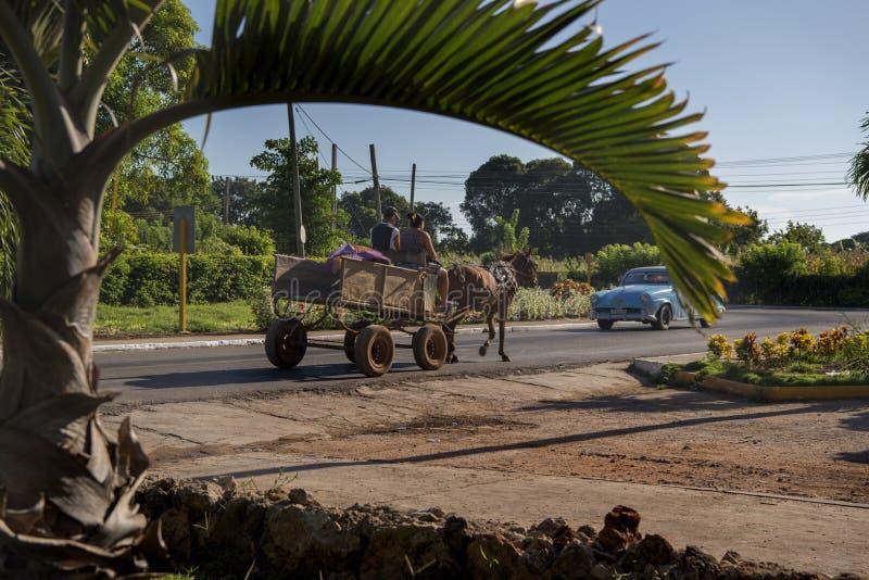 Paard getrokken kar, Cuba stock foto