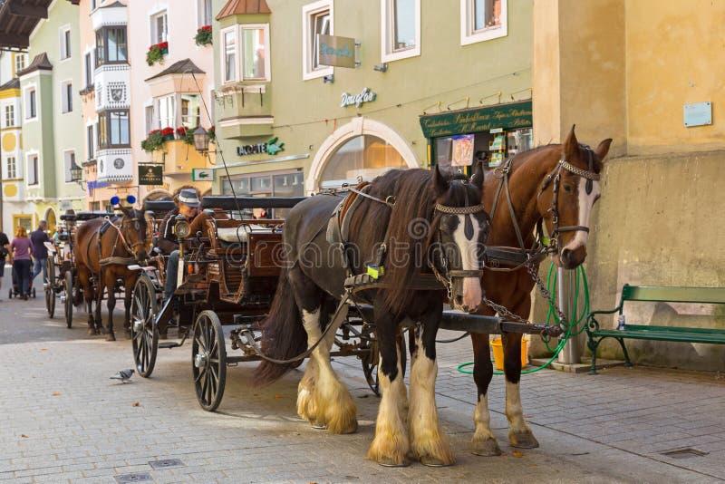 Paard getrokken vervoer die met Zigeunerpaard zich buiten buiil bevinden royalty-vrije stock foto