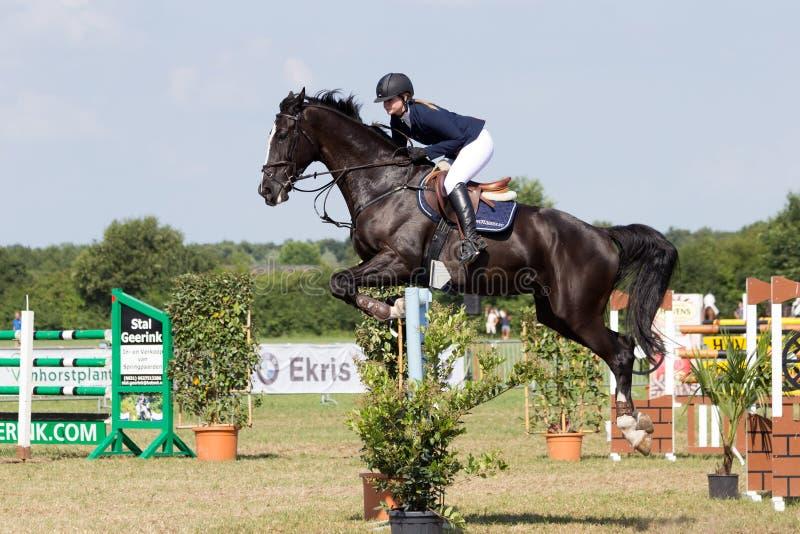 Paard het springen stock foto