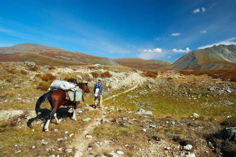 Paard, mensen en blauwe hemel. Altay. royalty-vrije stock foto's