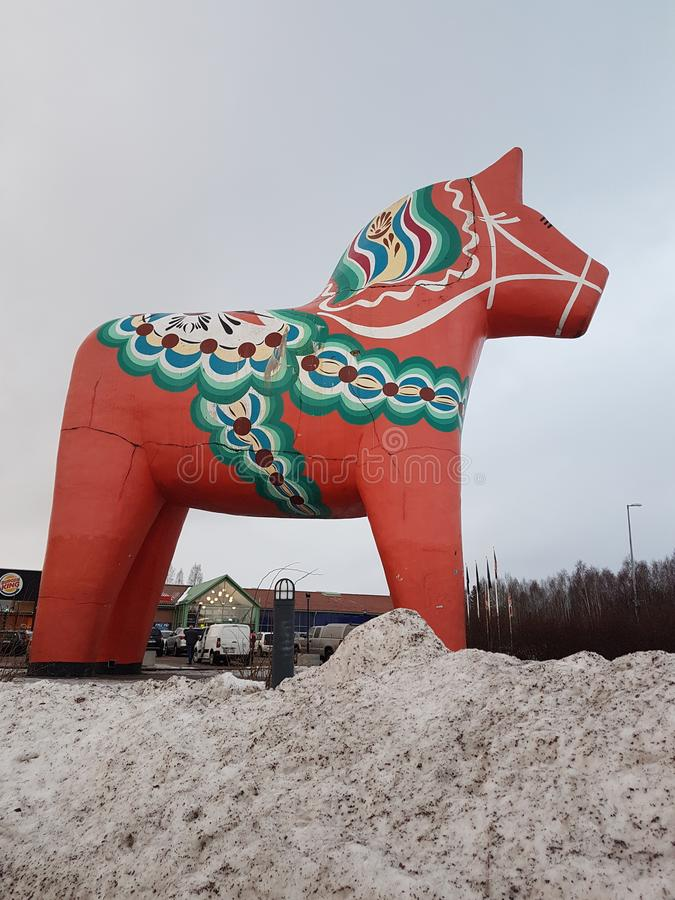 Paard in Noord-Zweden royalty-vrije stock afbeelding