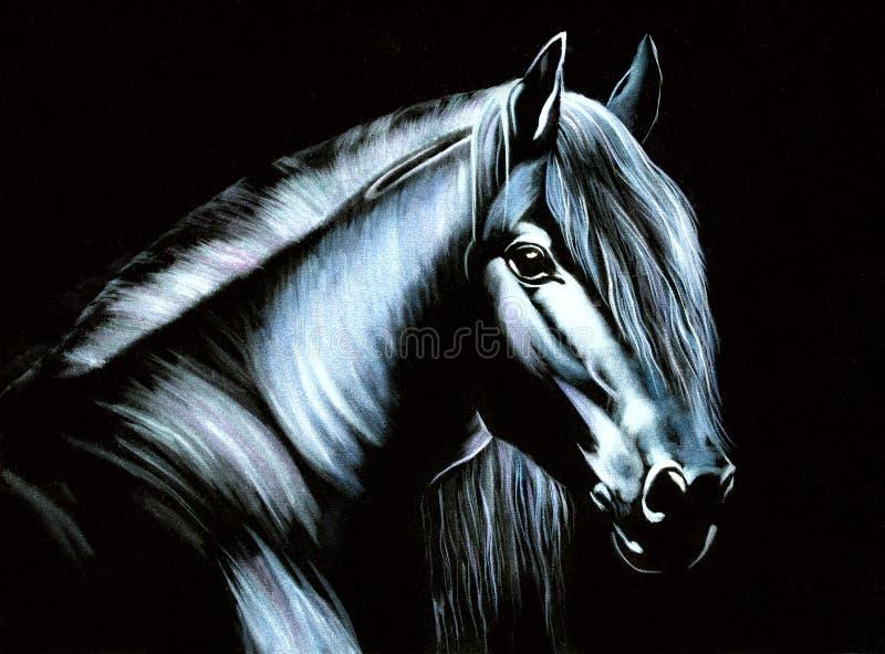 Paard op fluweel stock fotografie
