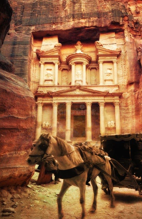 Paard in Petra Jordan royalty-vrije stock fotografie