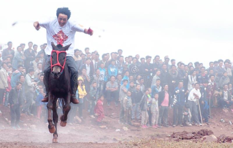 Paard Racing