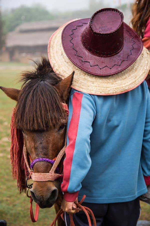 Paardbewaarder stock foto's