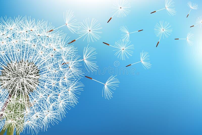Paardebloem blazende zaden op blauwe achtergrond royalty-vrije illustratie