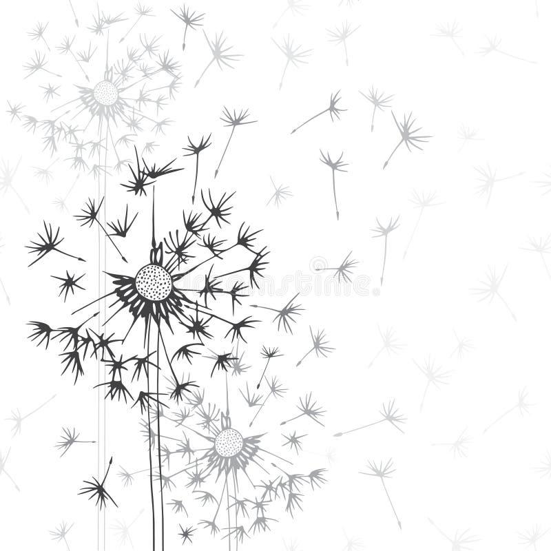 paardebloemen Hand-drawn bloemenachtergrond, zwart-wit IL vector illustratie