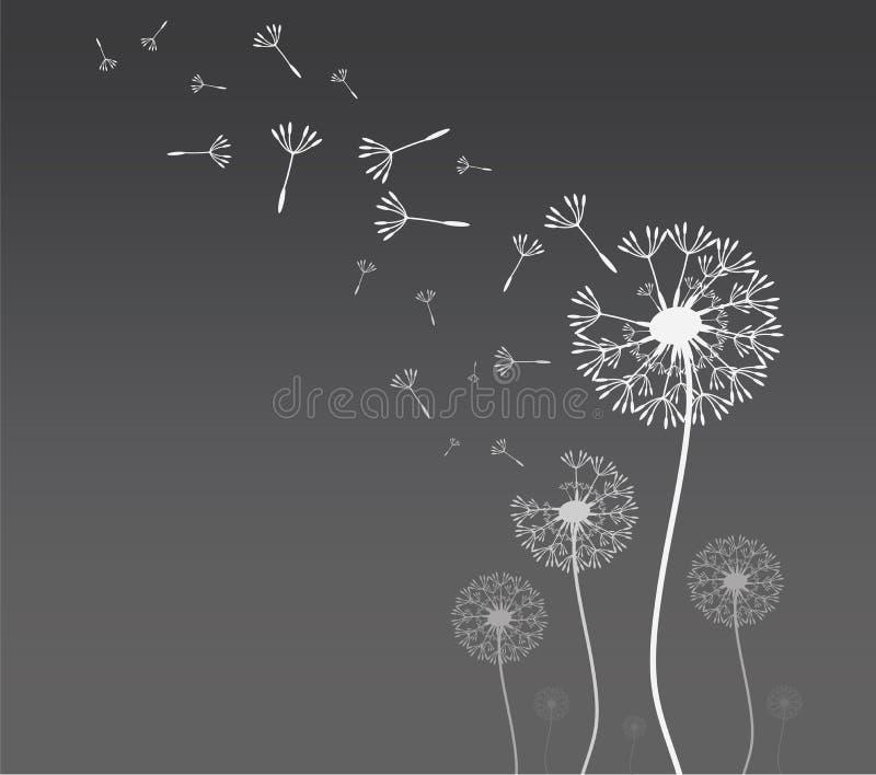 Paardebloemsilhouet met vliegende paardebloemknoppen vector illustratie