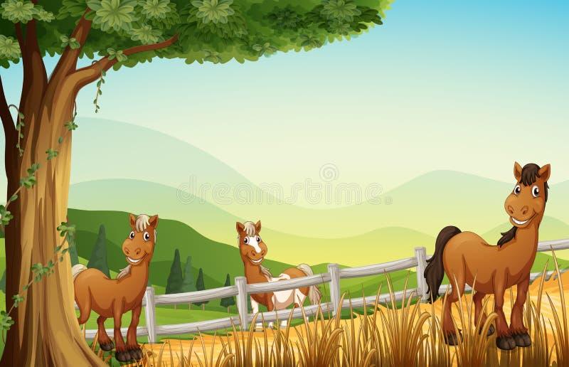Paarden bij de heuvel dichtbij de boom stock illustratie