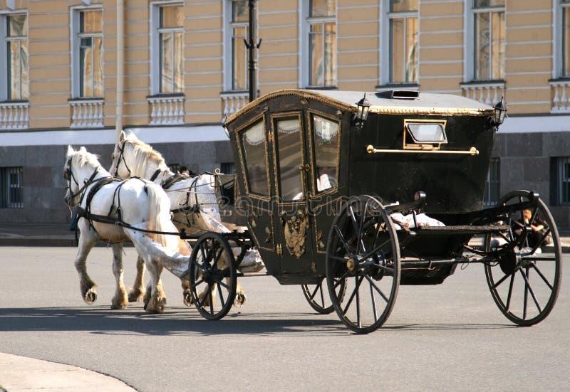 Paarden die vervoer trekken