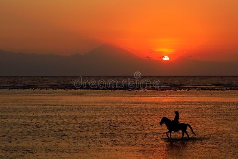 Paarden en rijders op het strand bij zonsondergang stock foto