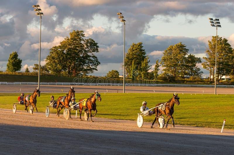 Paarden en ruiters in uitrustingsras stock afbeeldingen