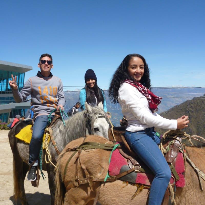 Paarden en tienerjaren stock fotografie