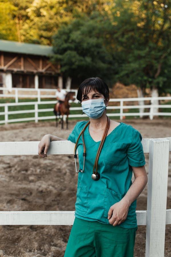 Paarden en veterinaire baan stock foto's