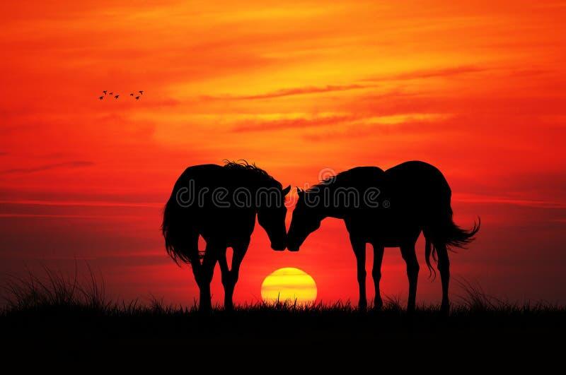 Paarden in Liefde vector illustratie