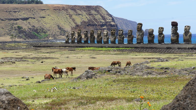 Paarden op het Eiland van Pasen royalty-vrije stock afbeeldingen