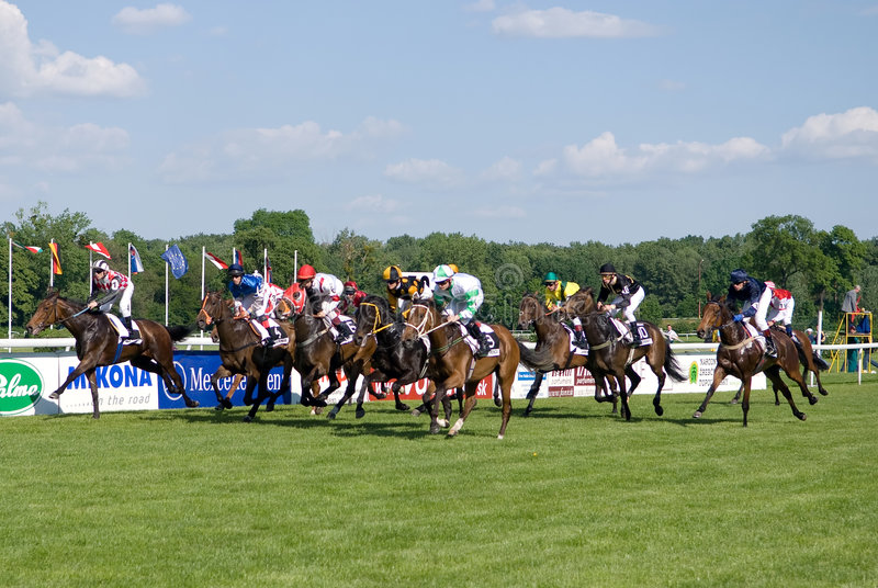 Paardenkoers stock fotografie