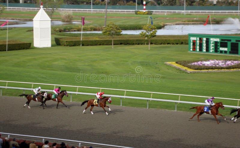 Paardenrennen bij de Gouden Gebieden van de Poort royalty-vrije stock afbeeldingen