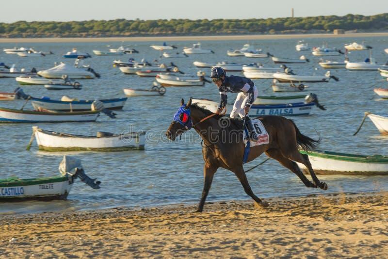 Paardenrennen op de stranden van Sanlucar stock afbeeldingen