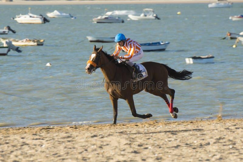 Paardenrennen op de stranden van Sanlucar stock afbeelding