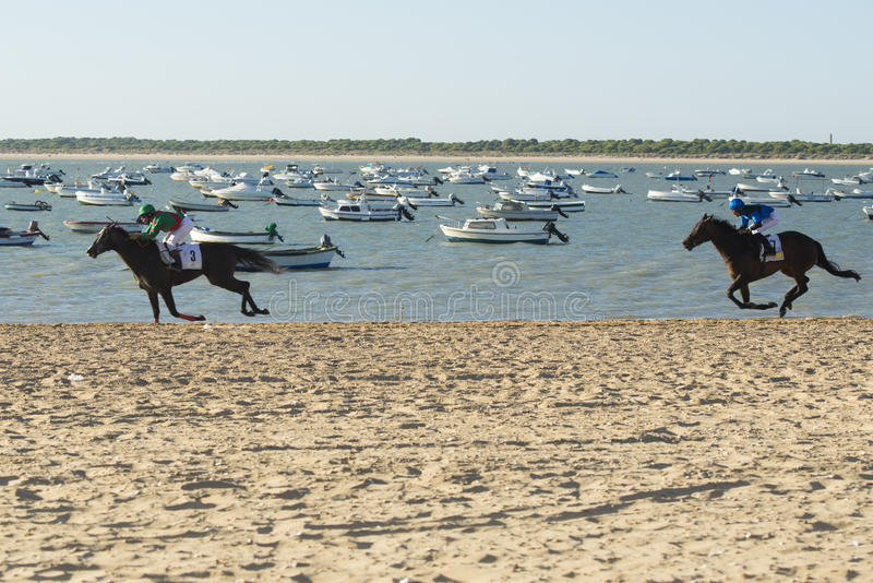 Paardenrennen op de stranden van Sanlucar royalty-vrije stock fotografie