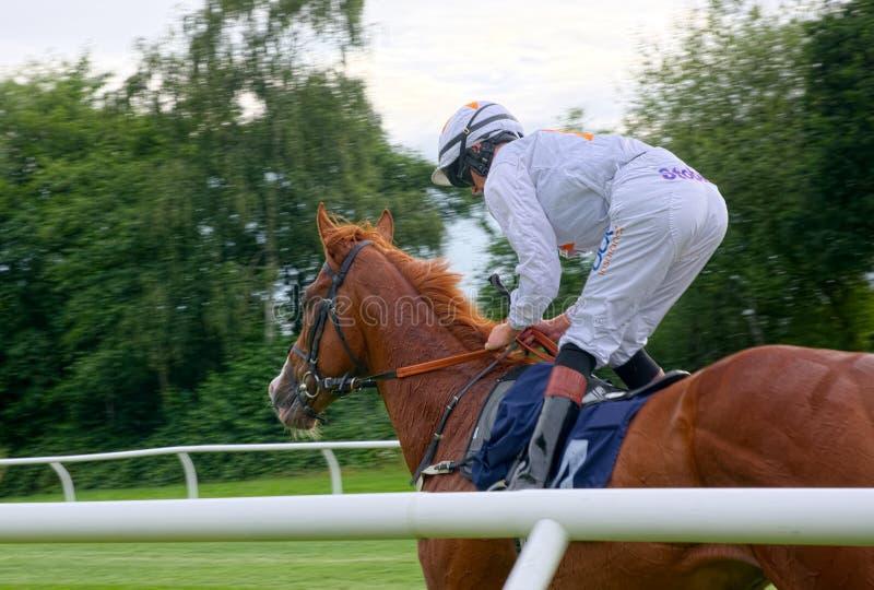 Paardenrennenjockey Sean Kirrane die Magische Rit berijden royalty-vrije stock afbeelding