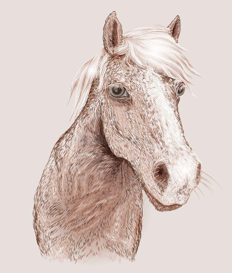 Paardlandbouwbedrijf, schone het paardstallen van Nice vector illustratie