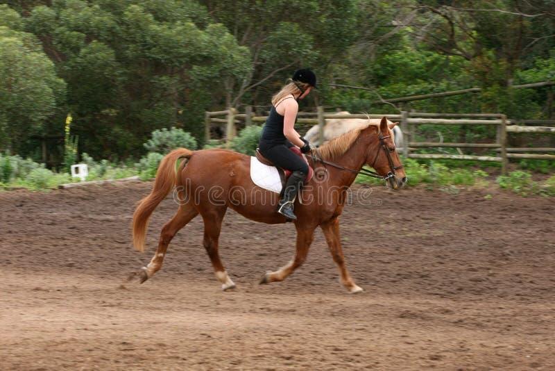 Paardrijden royalty-vrije stock foto's