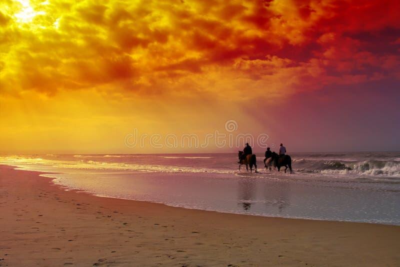 Paardrijden royalty-vrije stock foto
