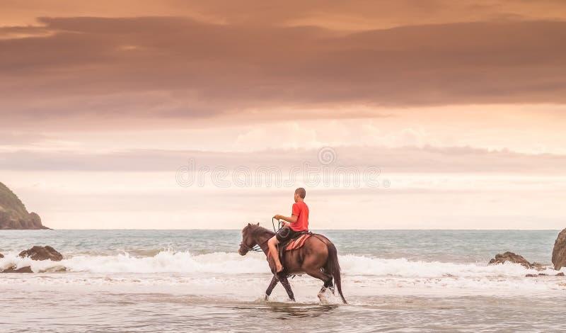 Paardrijden in de brandingsmeningen rond Costa Rica royalty-vrije stock afbeelding