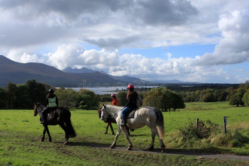 Paardrijden in het Nationale Park van Killarney, Provincie Kerry, Ierland royalty-vrije stock afbeelding