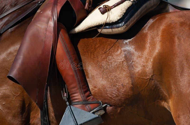 Paardrijdenconcept royalty-vrije stock fotografie