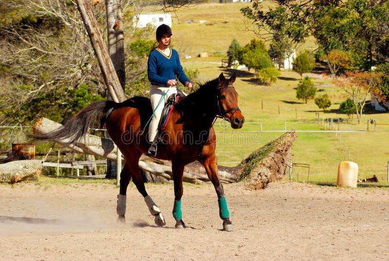 Paardrijdenmeisje stock foto's