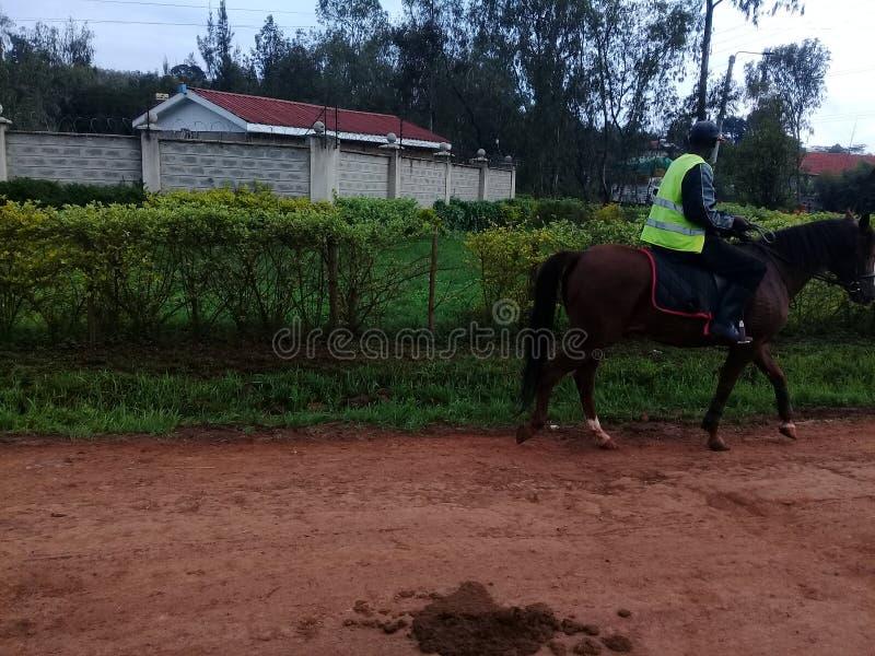 Paardrit in de stad van Nairobi royalty-vrije stock foto