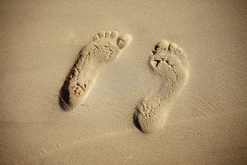 Paardrucke von weiblichen Beinen auf Sand lizenzfreie stockbilder